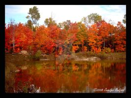 Autumn 2008 Reflections I by Jenna-Rose