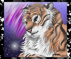 Tiger by TussenSessan