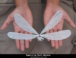 Intricate Papercut Dragonfly by ParthKothekar