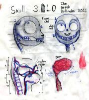 Medical studies 05: Skull by TheGreekDollmaker