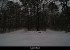 Winter-1-STOCK-2011 by Rainny-Stock