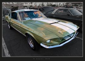 GT 350 by HogRider