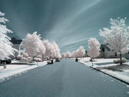 Infrared XIII by ilimel