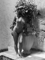 Statuesque II by Grey8Wolf