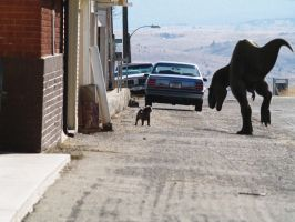defiant dog, butte, montana by pheaston