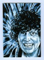 The Fourth Doctor by Herbarianband