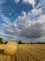 Straw Bales looking north by davepphotographer