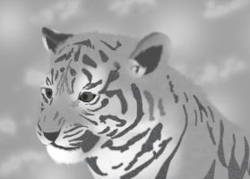 Tiger Cub by Baneling77