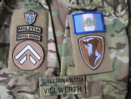 Gallian Militia Patches 2007EC by Vielwerth