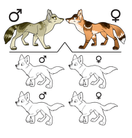 Breeders Adoptables .-CLOSED-. by Lova-Adopts
