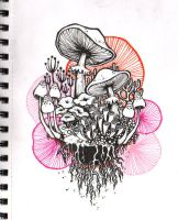Shrooms by Lurppa