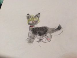 Chattty cant water color pencil by Mysti-crow