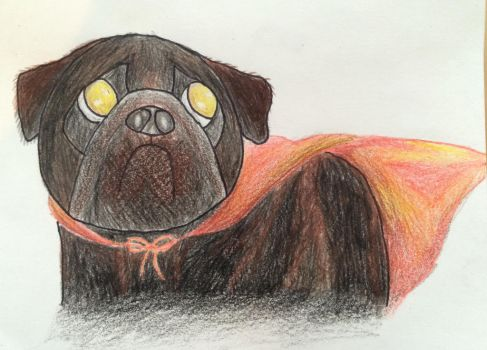 Super Pug by iBoopYourNose