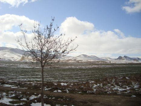 North East of Iran. Around the city Ghoochan by mahyar1980
