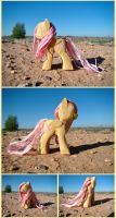 Time Trial Woodwork: Fluttershy by xofox