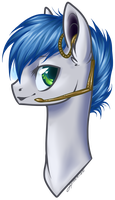 Solar Steel Bust by Haventide