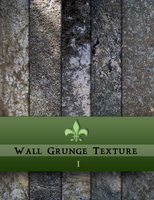 Wall Grunge Textures 1 by CruzerBlade