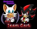 Ask Team Dark Cover Art by supersonic210