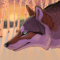 Winter Sunset Icon by winternacht