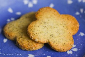 Macha cookies 1 by patchow