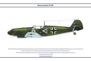 Bf 109 D-1 JGr102 1 by WS-Clave