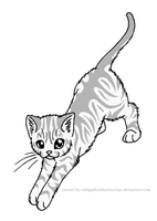Stand Stretch Tabby Lineart by WildpathOfShadowClan