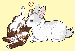 bunnies by Curticle
