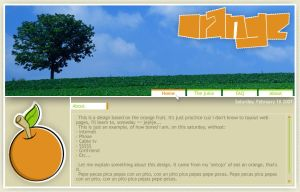 Orange website by wilsoninc