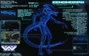 Xeno analysis by M41Aconner