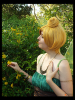 Tinkerbell in the Flower Field (Cosplay) by KrazyKari