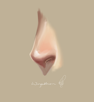 Semi Realism Nose by Wingathon