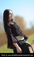 Gothic Lace Stock Preview by DanielleFioreModel