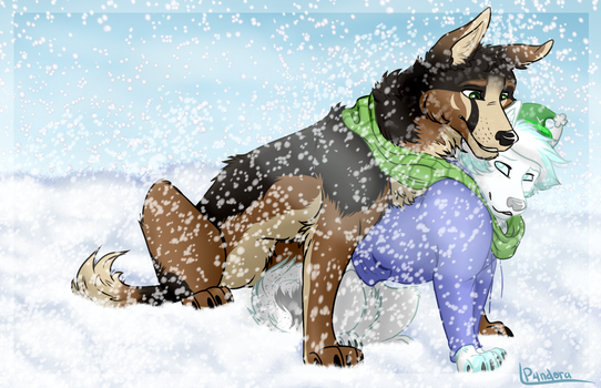 Best protection from the cold winter by P4ndora-L