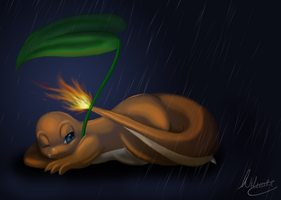 Charmander Speedpaint by SonARTic