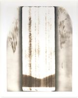 angel wings with landscape by equivoque