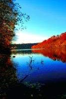 The Monongahela during Fall by MJKam11