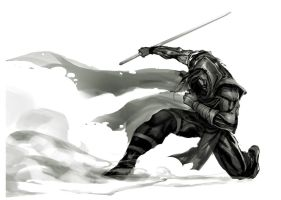 Swordman Assassin by Firetooth223