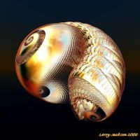 Golden Conch Shell by Actionjack52