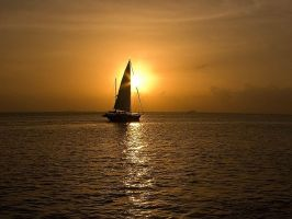 Wallpaper - Key Biscayne by emailandthings