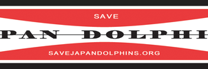 Save Japan Dolphins Logo - G and S Style by MarcWF