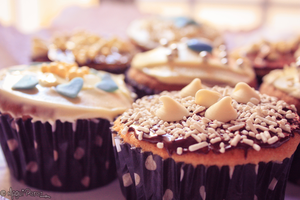 All you need is cupcakes by maguis