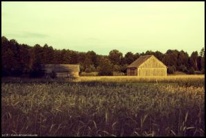 Countryside 2 by Lhach