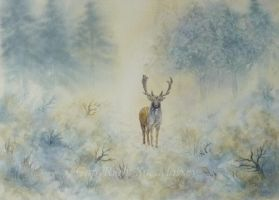 The Regal Stag. by SueMArt