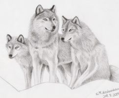 Wolves by Elkenar
