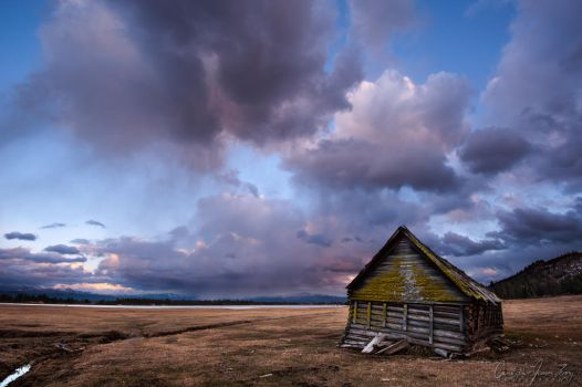Weathered by ShamelessRain
