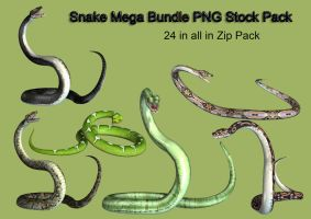 Snake Mega Stock Pack by Roys-Art