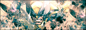 wolverine furious by physiks