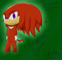 Knuckles the Echidna by sonicfan511