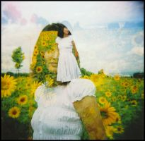 holga sunflowers II by quadratiges