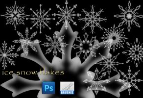 Ice Snow Flakes by roula33